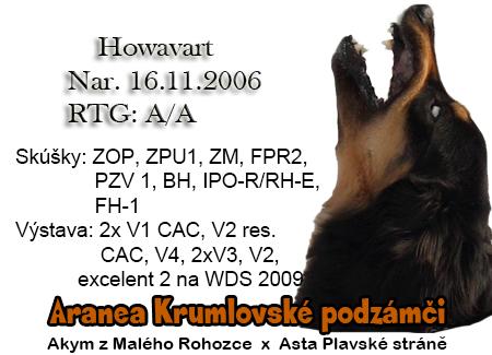 http://www.vycvik.sk/nasi-psi/index/aranea.jpg