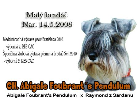http://www.vycvik.sk/nasi-psi/index/ebina.jpg